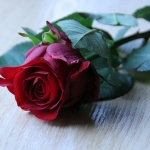 Romantik online